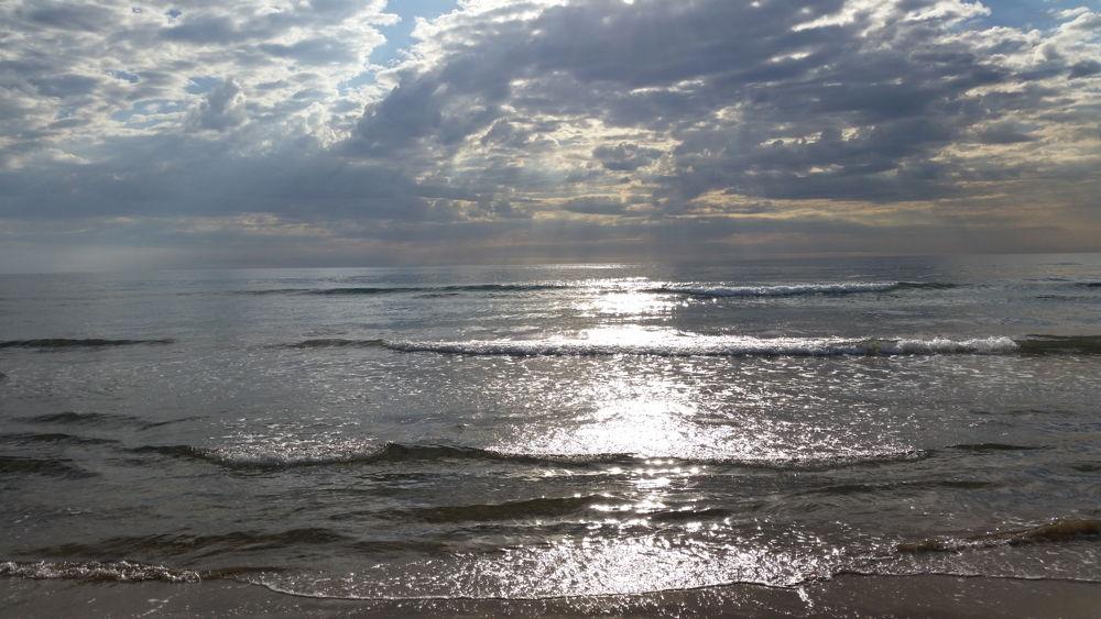 Playa de las Arenas3